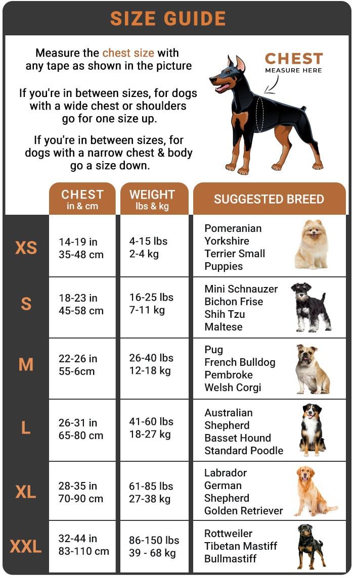 TrueHarness Size Guide